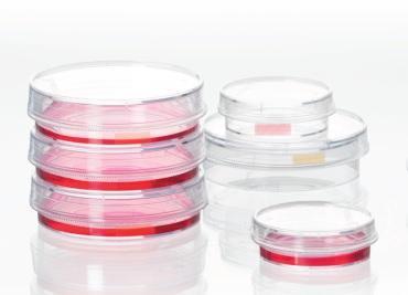 Celledyrkingsskåler